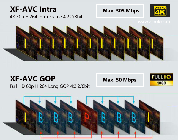 Canon XF-AVC and Vegas Pro 17 | Edit XF-AVC in Vegas Pro 17